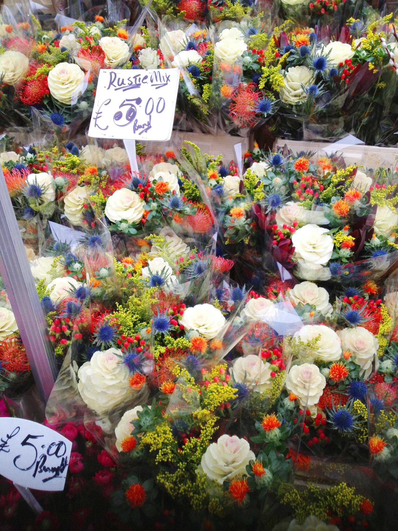 http://www.houyhnhnm.jp/blog/ticro/images/42e140a8cf4e66c98113de3dae33ff291.jpg