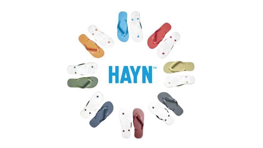 HAYN1602