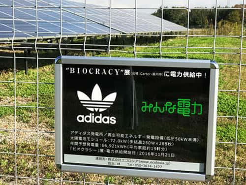 biogracy アディダス